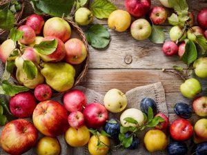 Apfelmarkt - various fresh fruits