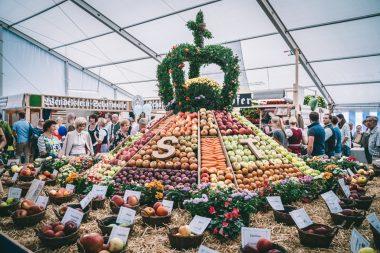 Impressionen Apfelmarkt 2018